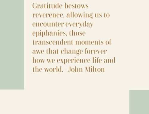 Embrace Gratitude + Experience Joy